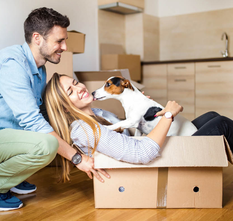 Couple and dog in box moving into new home.